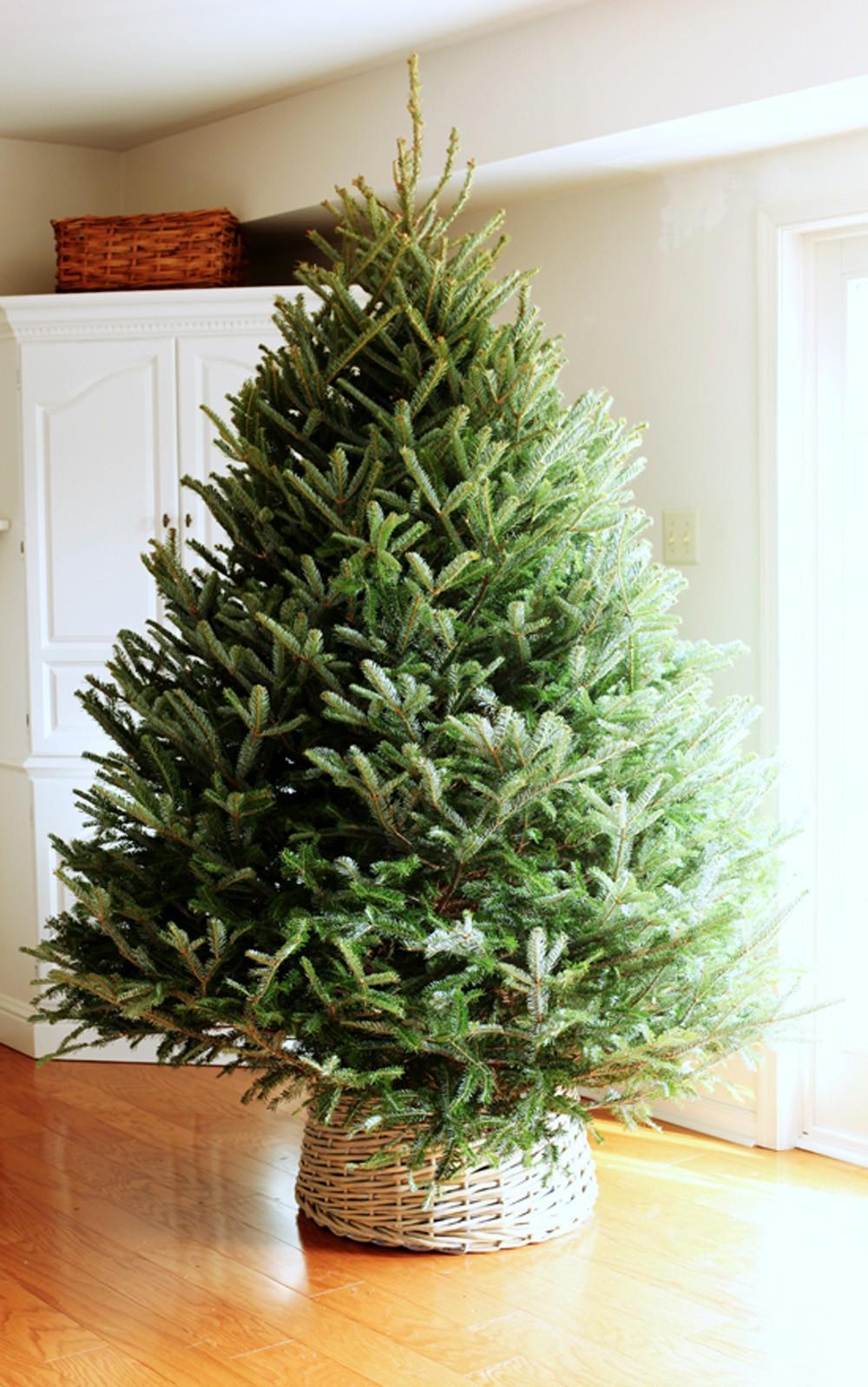 Basket Christmas Tree Skirt